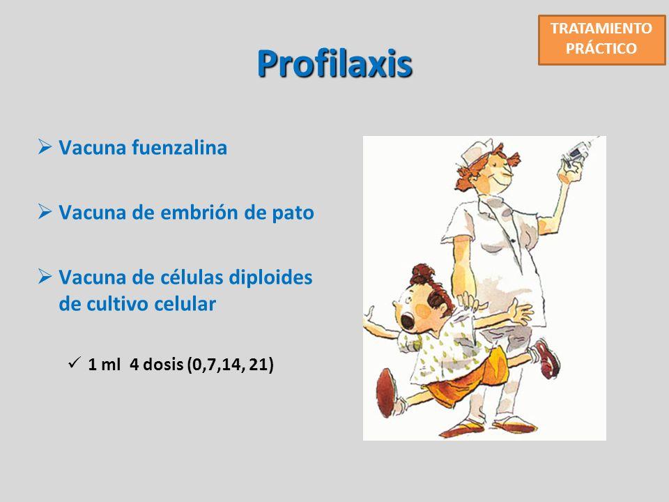 Profilaxis Vacuna fuenzalina Vacuna de embrión de pato
