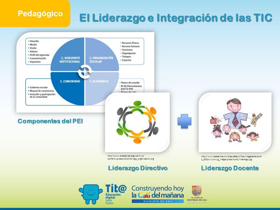 El Liderazgo e Integración de las TIC