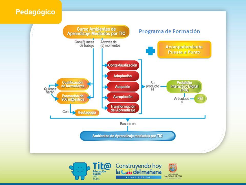 Pedagógico Programa de Formación