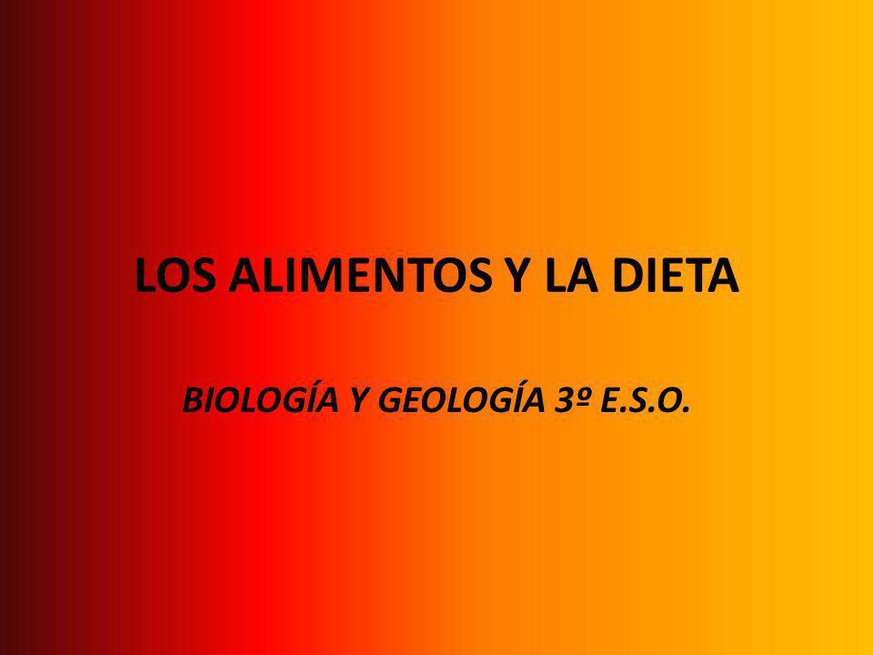 LOS ALIMENTOS Y LA DIETA