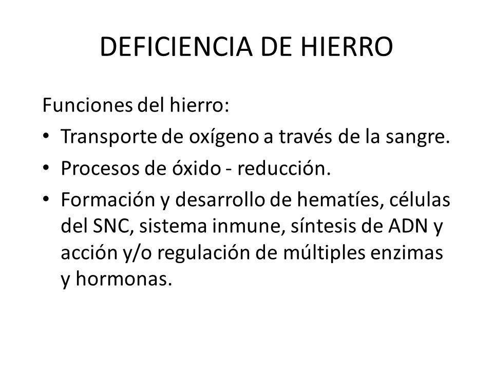 DEFICIENCIA DE HIERRO Funciones del hierro: