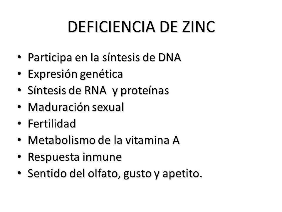 DEFICIENCIA DE ZINC Participa en la síntesis de DNA Expresión genética