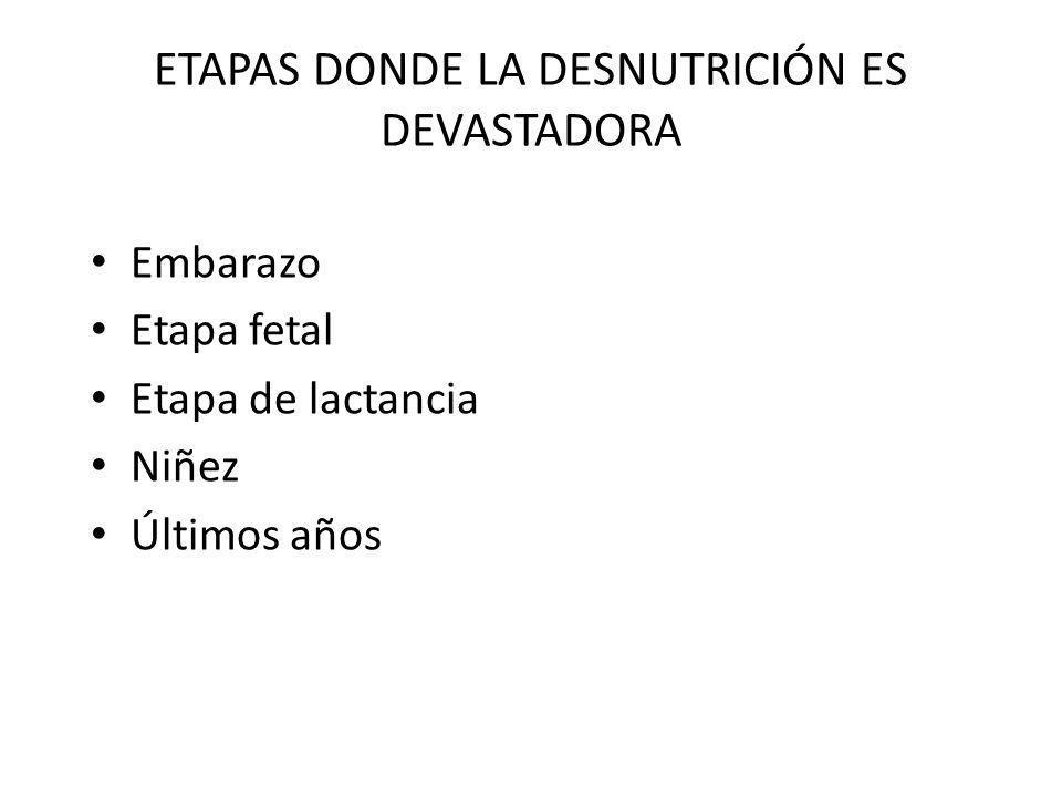 ETAPAS DONDE LA DESNUTRICIÓN ES DEVASTADORA