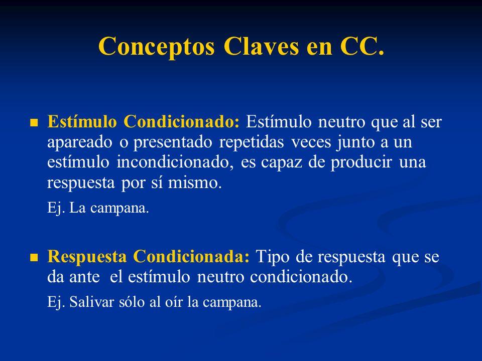 Conceptos Claves en CC.
