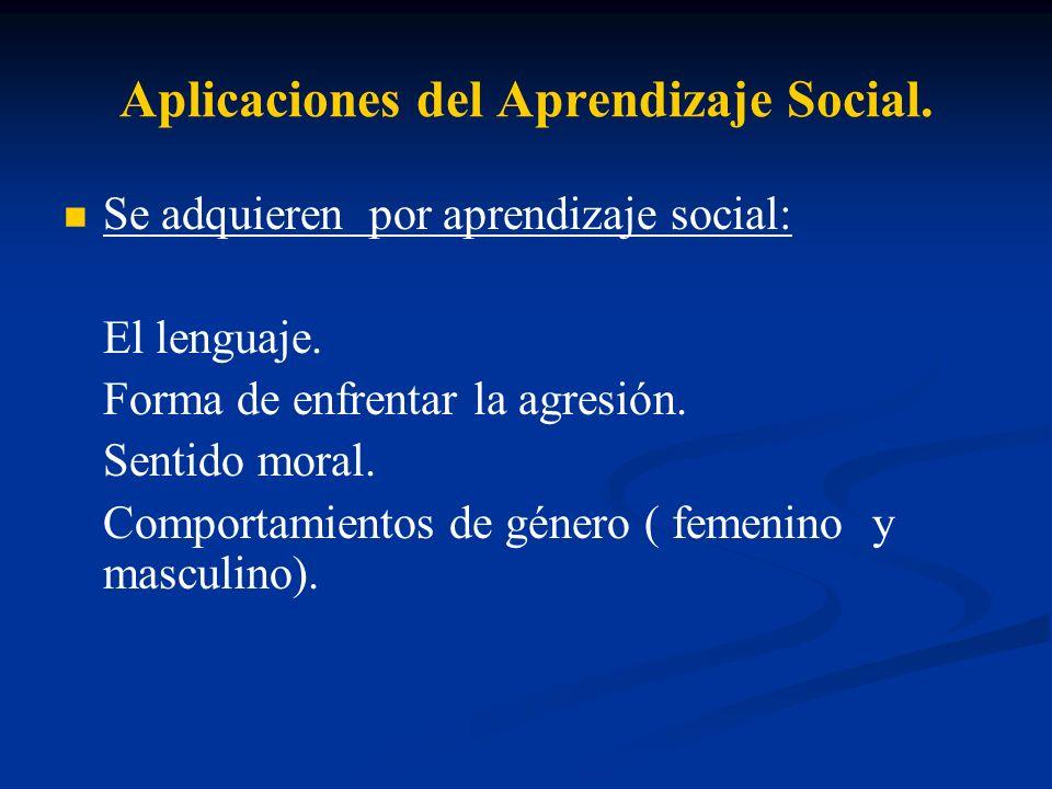Aplicaciones del Aprendizaje Social.