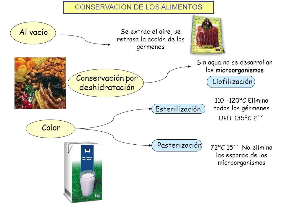 Conservación por deshidratación