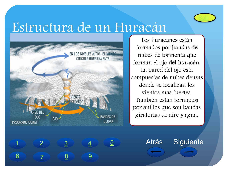Estructura de un Huracán
