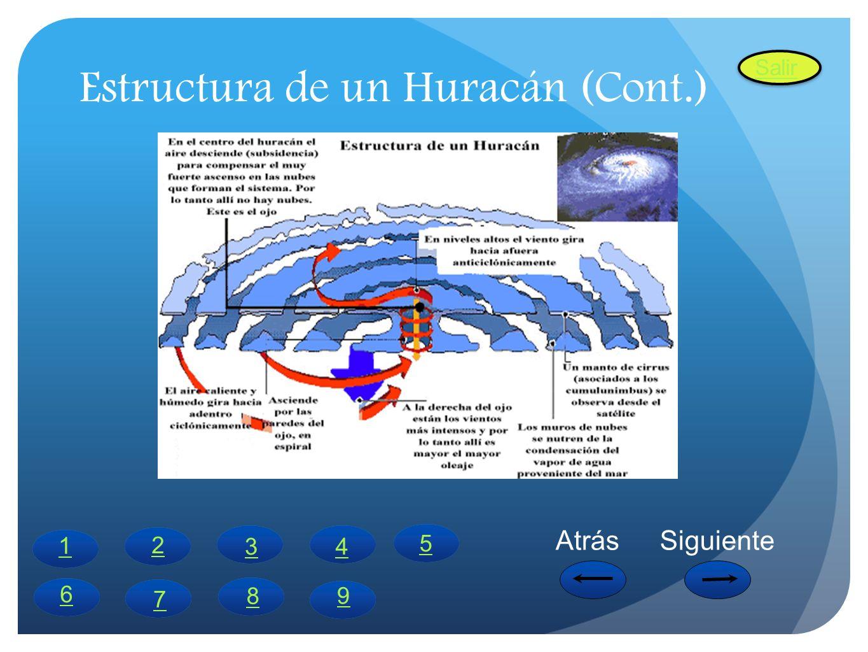 Estructura de un Huracán (Cont.)