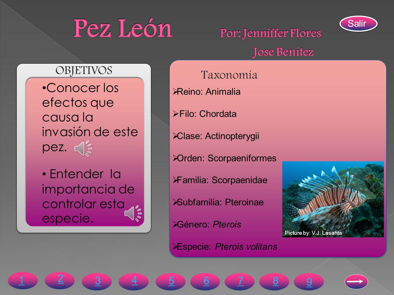 Pez León Por: Jenniffer Flores Jose Benitez