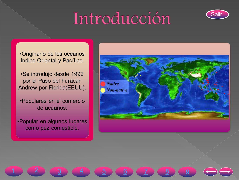 Introducción Salir. Originario de los océanos Indico Oriental y Pacífico. Se introdujo desde 1992 por el Paso del huracán Andrew por Florida(EEUU).