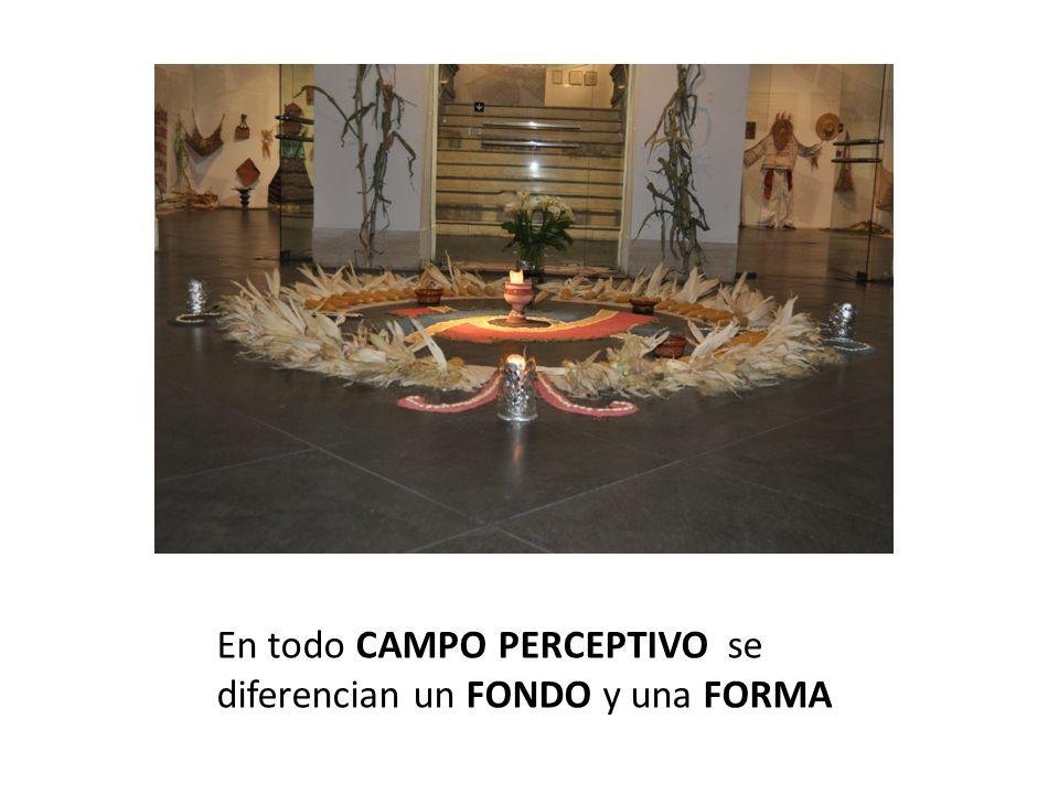 En todo CAMPO PERCEPTIVO se diferencian un FONDO y una FORMA
