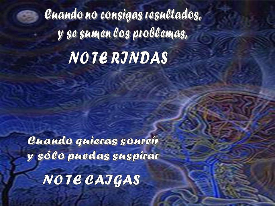 NO TE RINDAS NO TE CAIGAS