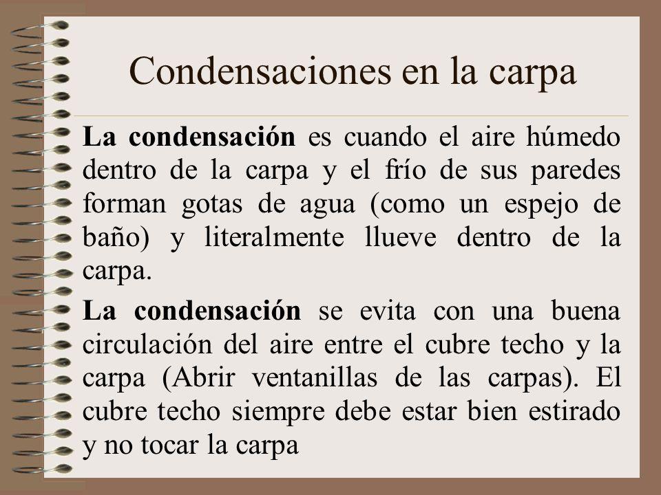 Condensaciones en la carpa