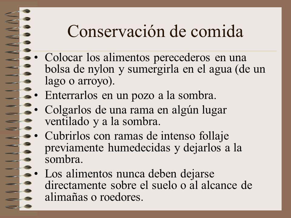 Conservación de comida