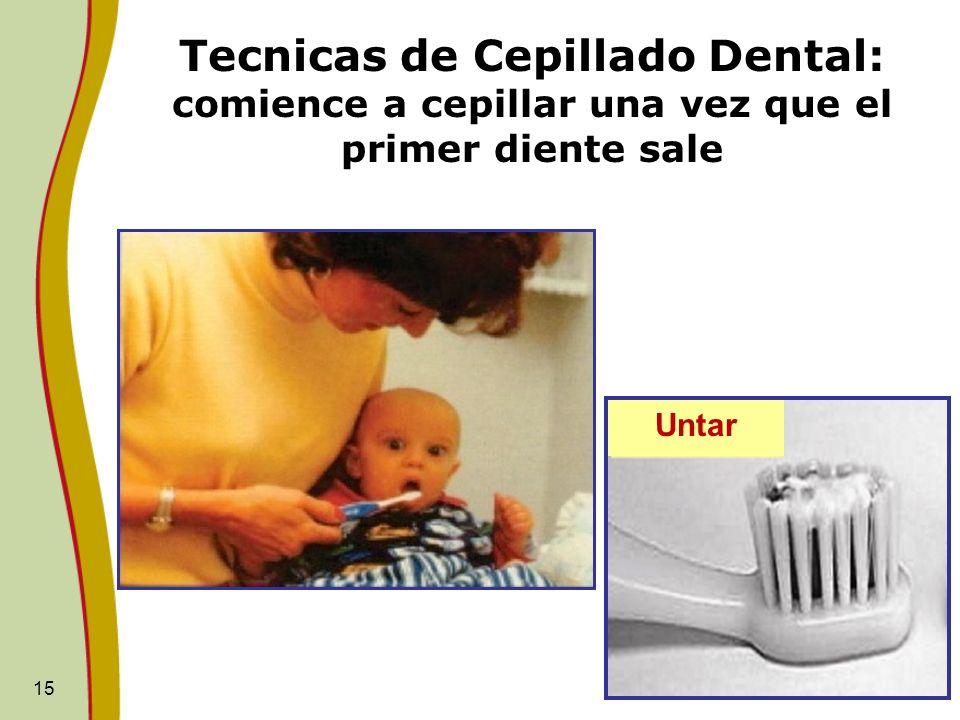 Tecnicas de Cepillado Dental: comience a cepillar una vez que el primer diente sale
