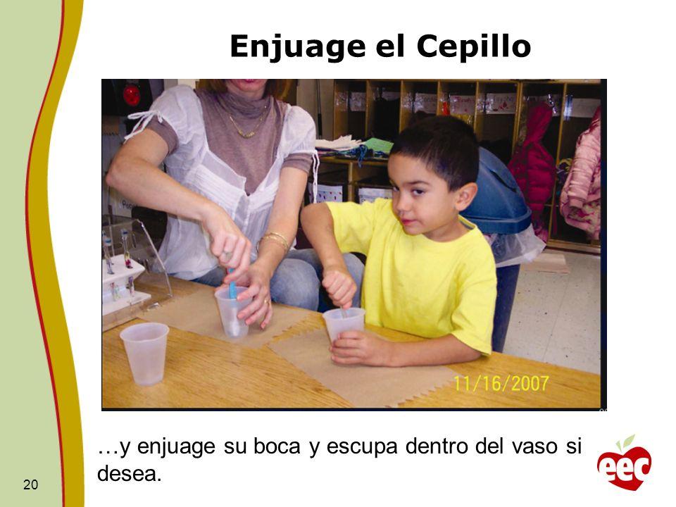 Enjuage el Cepillo
