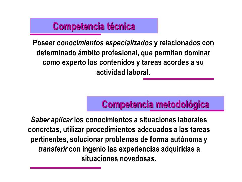 Competencia metodológica