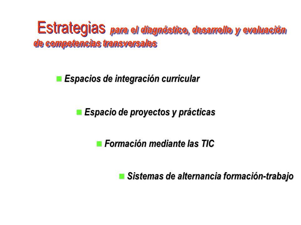 Estrategias para el diagnóstico, desarrollo y evaluación de competencias transversales