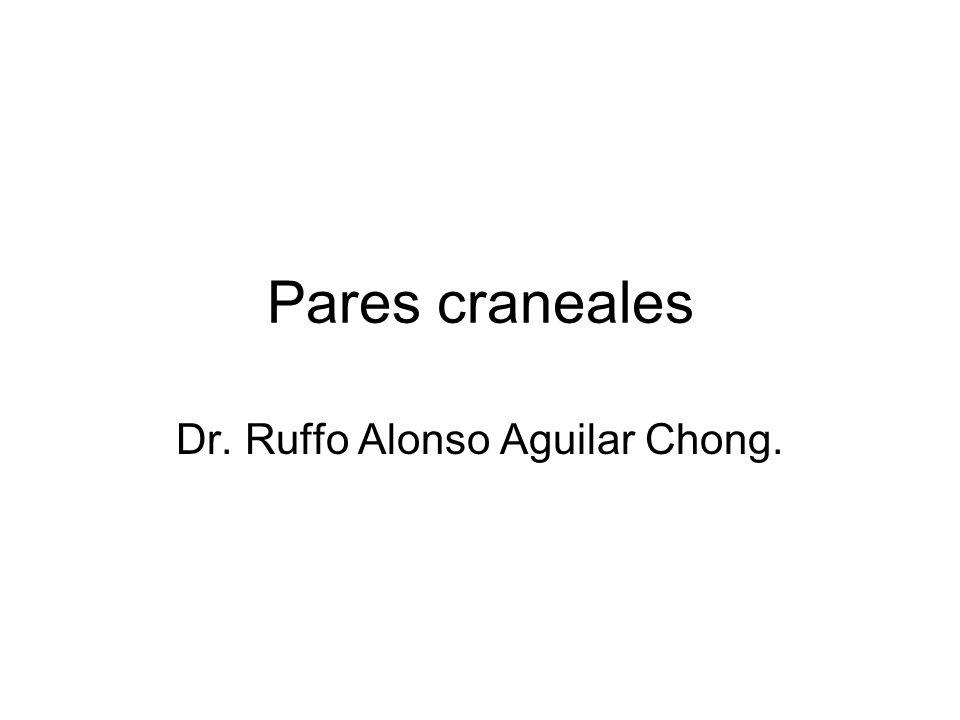 Dr. Ruffo Alonso Aguilar Chong.