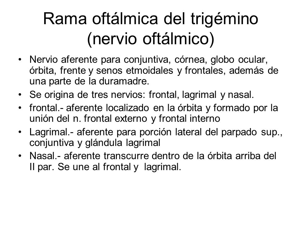 Rama oftálmica del trigémino (nervio oftálmico)