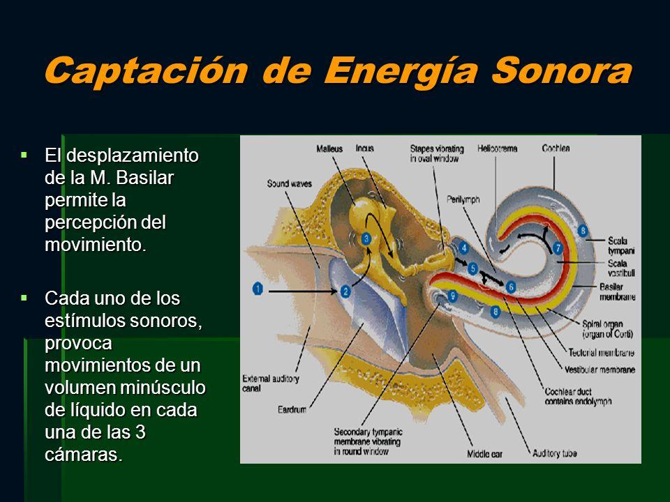Captación de Energía Sonora