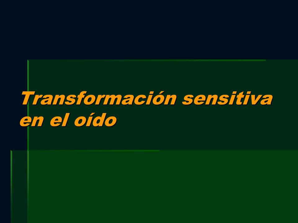 Transformación sensitiva en el oído