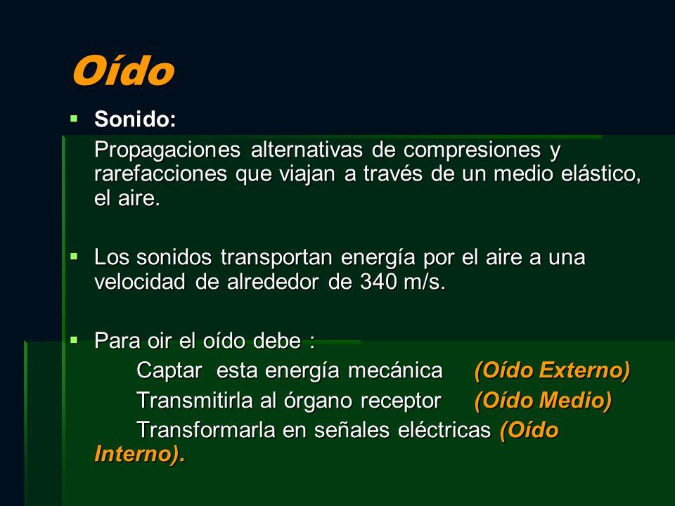 OídoSonido: Propagaciones alternativas de compresiones y rarefacciones que viajan a través de un medio elástico, el aire.