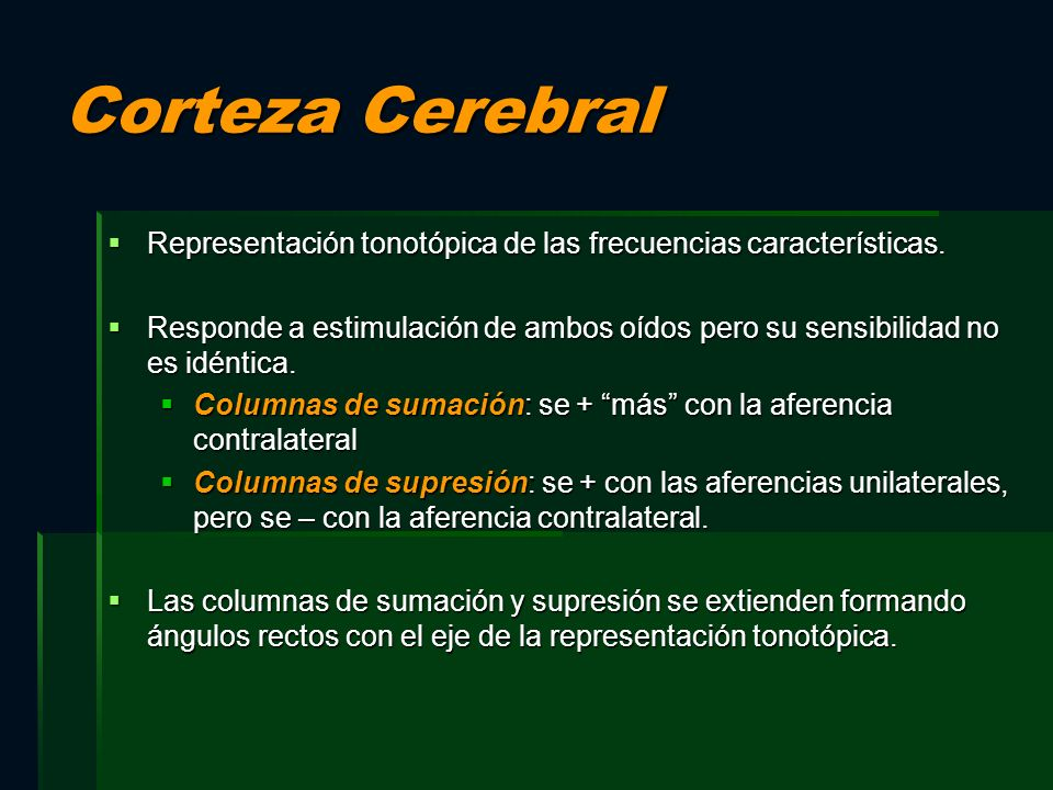 Corteza Cerebral Representación tonotópica de las frecuencias características.