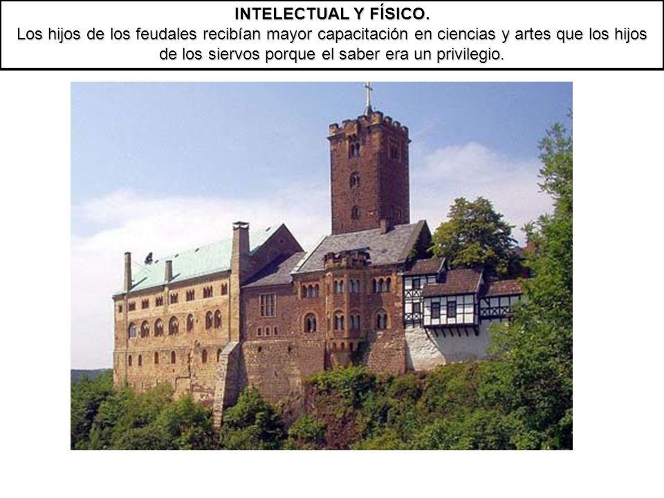 INTELECTUAL Y FÍSICO.