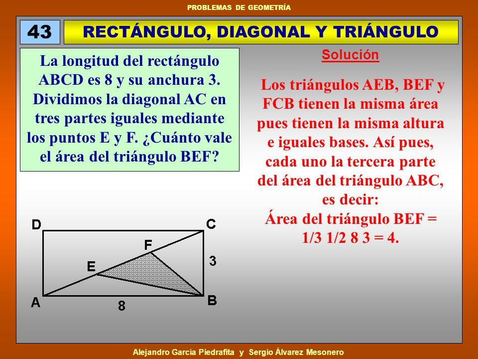 RECTÁNGULO, DIAGONAL Y TRIÁNGULO