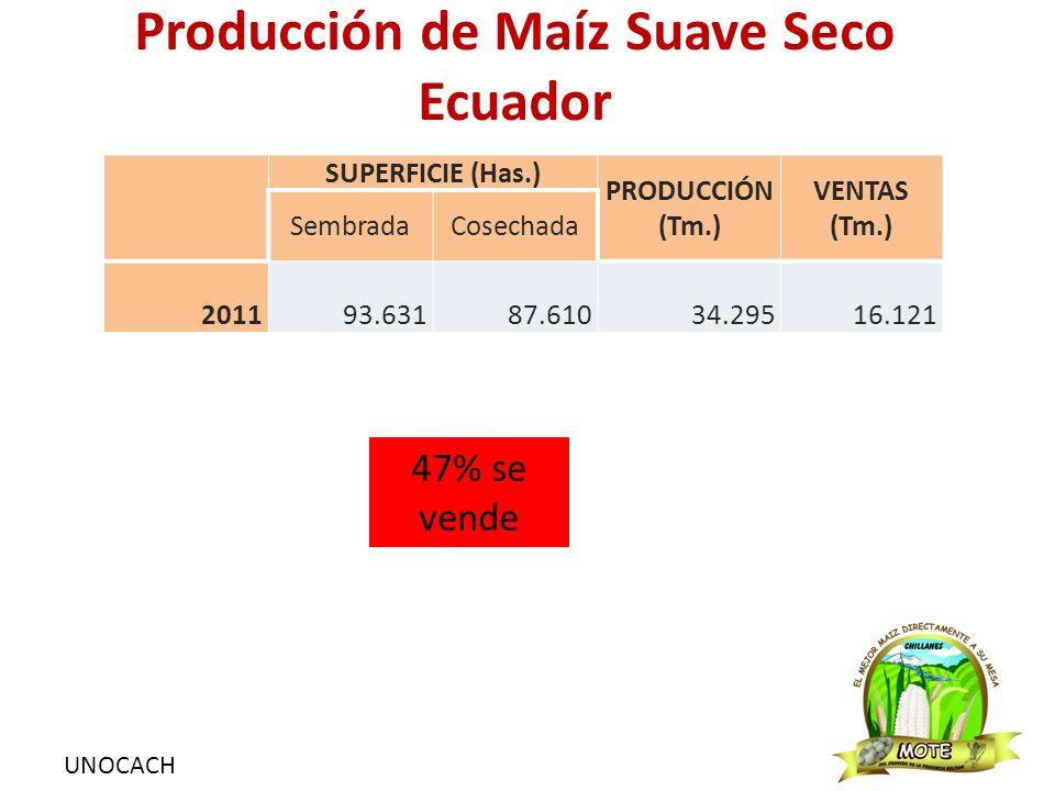 Producción de Maíz Suave Seco Bolivar