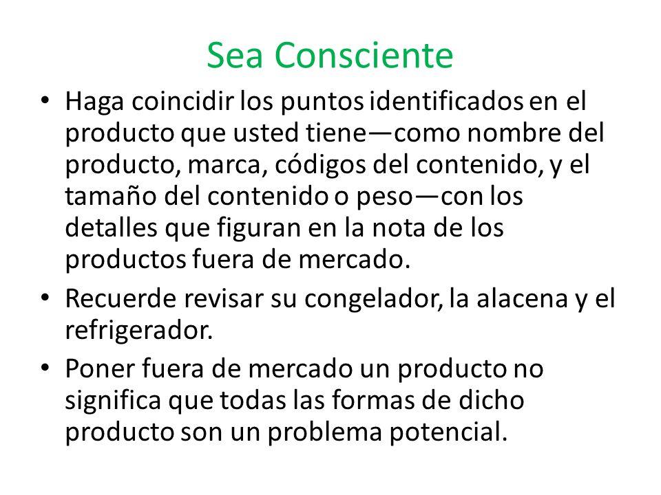 Sea Consciente