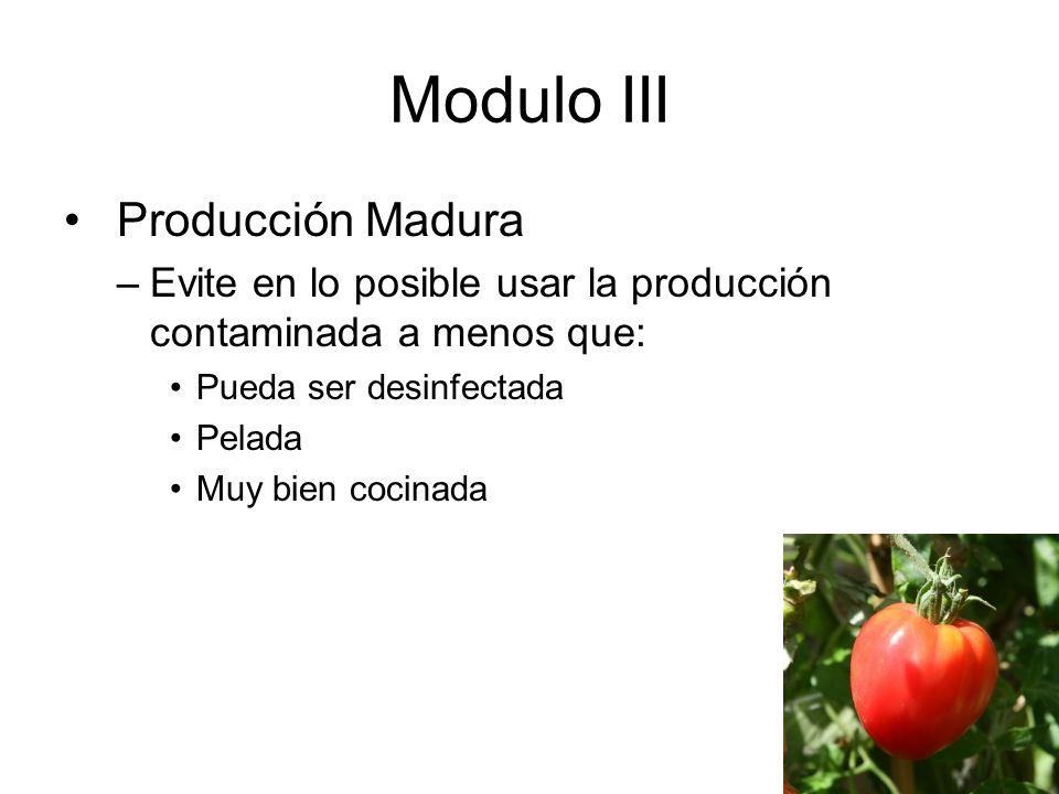 Modulo III Producción Madura