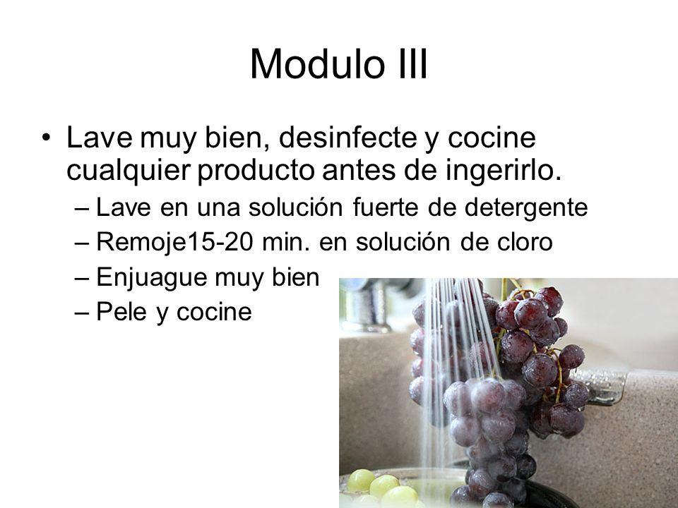 Modulo III Lave muy bien, desinfecte y cocine cualquier producto antes de ingerirlo. Lave en una solución fuerte de detergente.