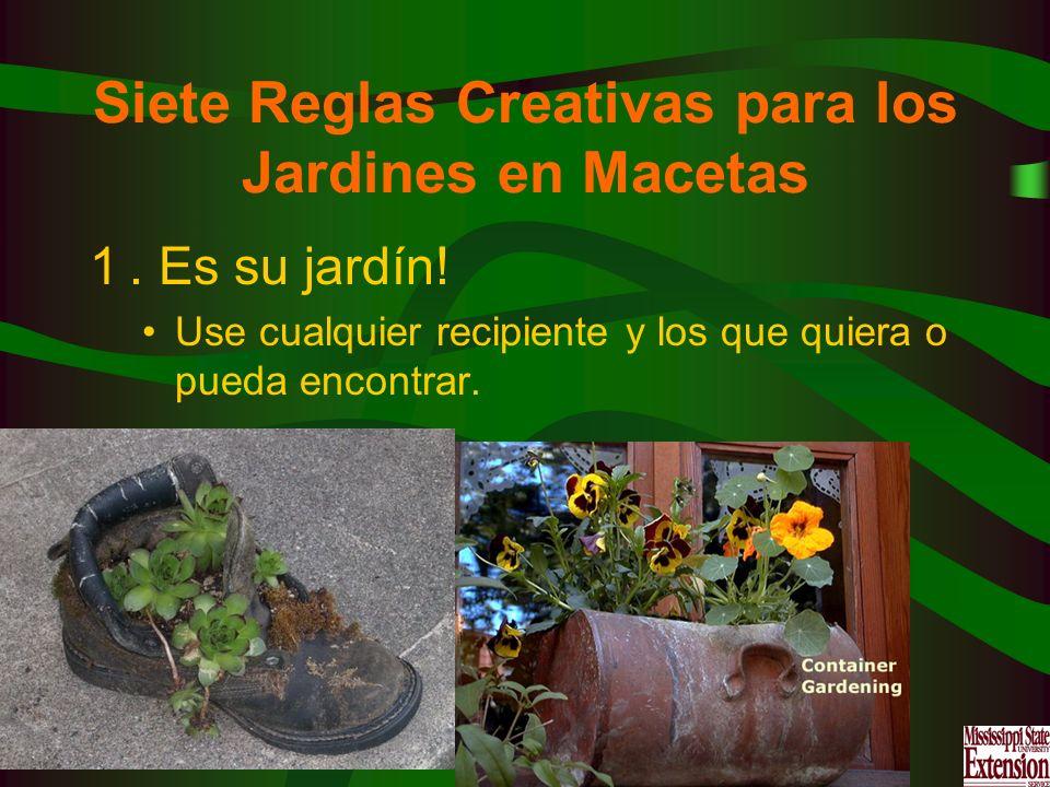 Siete Reglas Creativas para los Jardines en Macetas