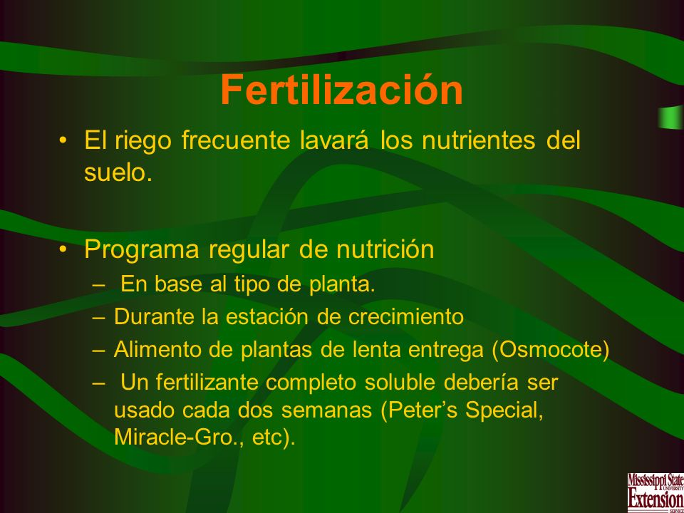 Fertilización El riego frecuente lavará los nutrientes del suelo.