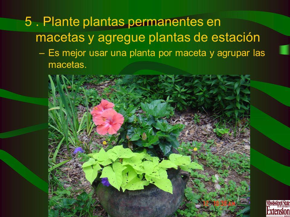 . Plante plantas permanentes en macetas y agregue plantas de estación