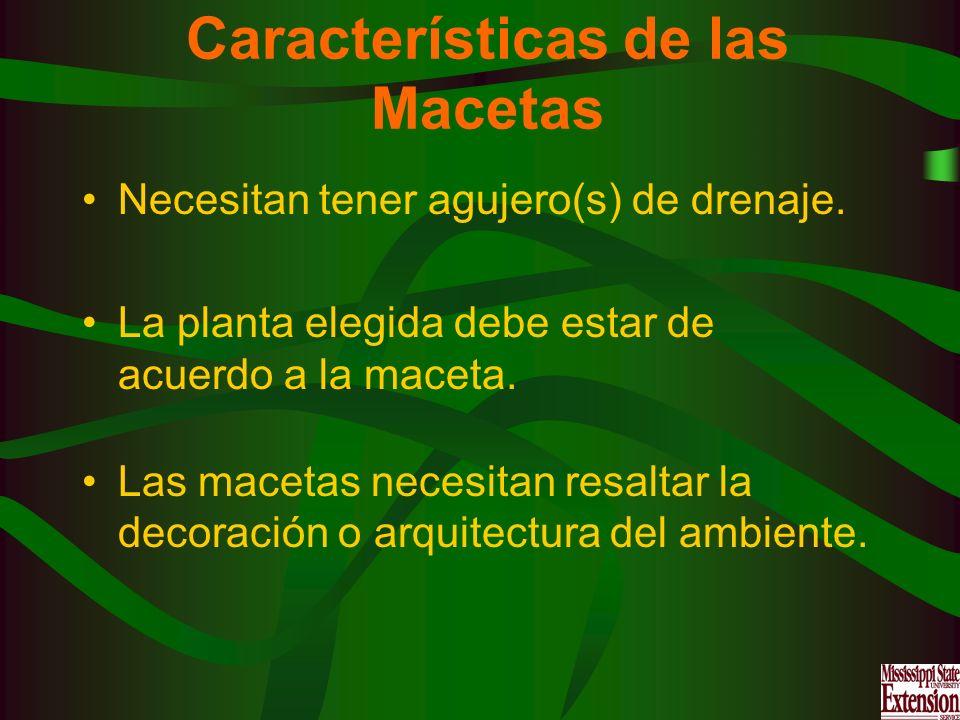 Características de las Macetas
