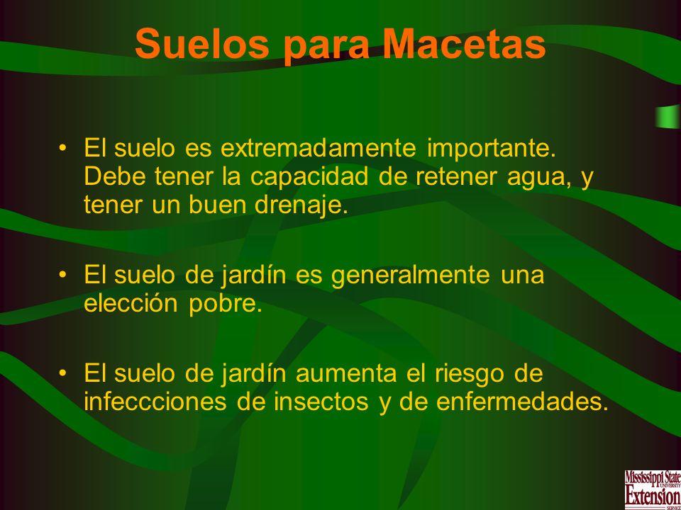 Suelos para MacetasEl suelo es extremadamente importante. Debe tener la capacidad de retener agua, y tener un buen drenaje.