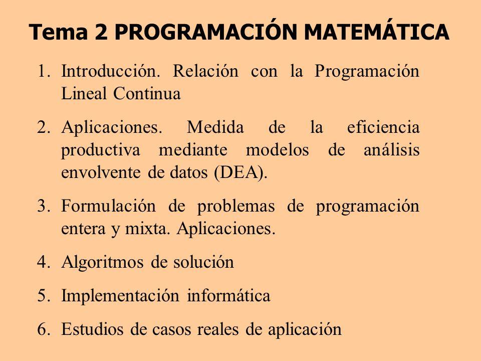 Tema 2 PROGRAMACIÓN MATEMÁTICA