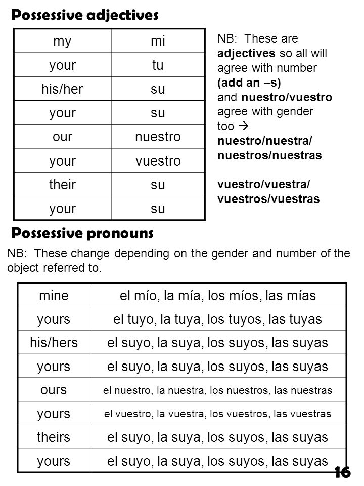 16 Possessive adjectives Possessive pronouns my mi your tu his/her su