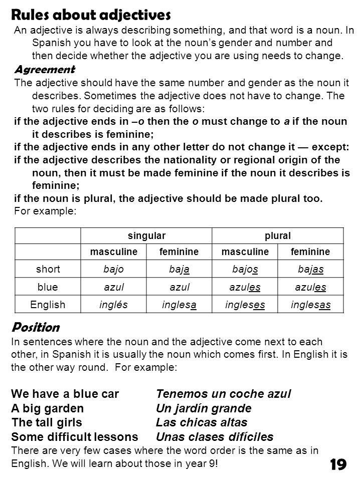 19 Rules about adjectives Position Agreement