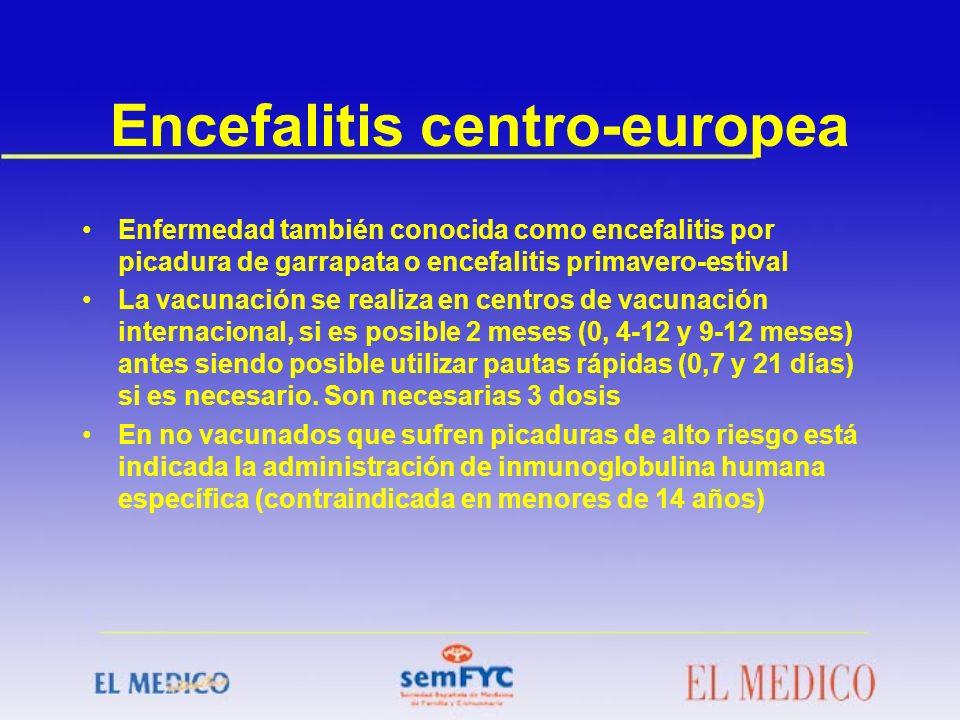 Encefalitis centro-europea