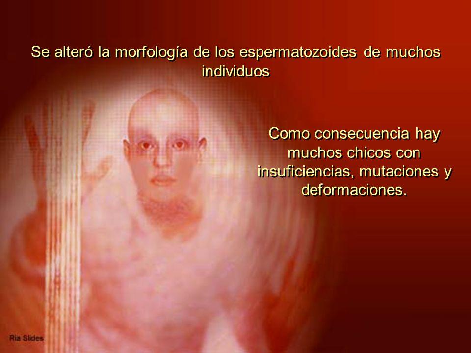 Se alteró la morfología de los espermatozoides de muchos individuos