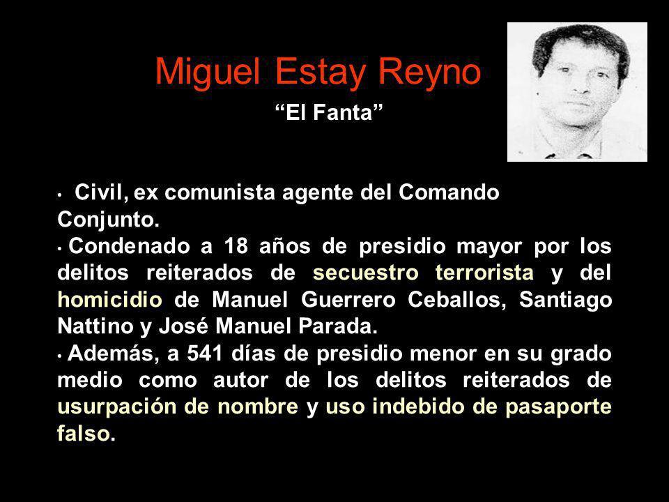Miguel Estay Reyno El Fanta