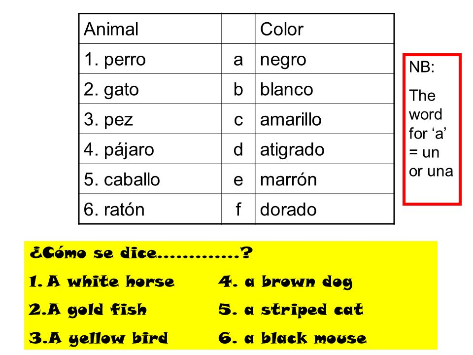 Animal Color 1. perro a negro 2. gato b blanco 3. pez c amarillo