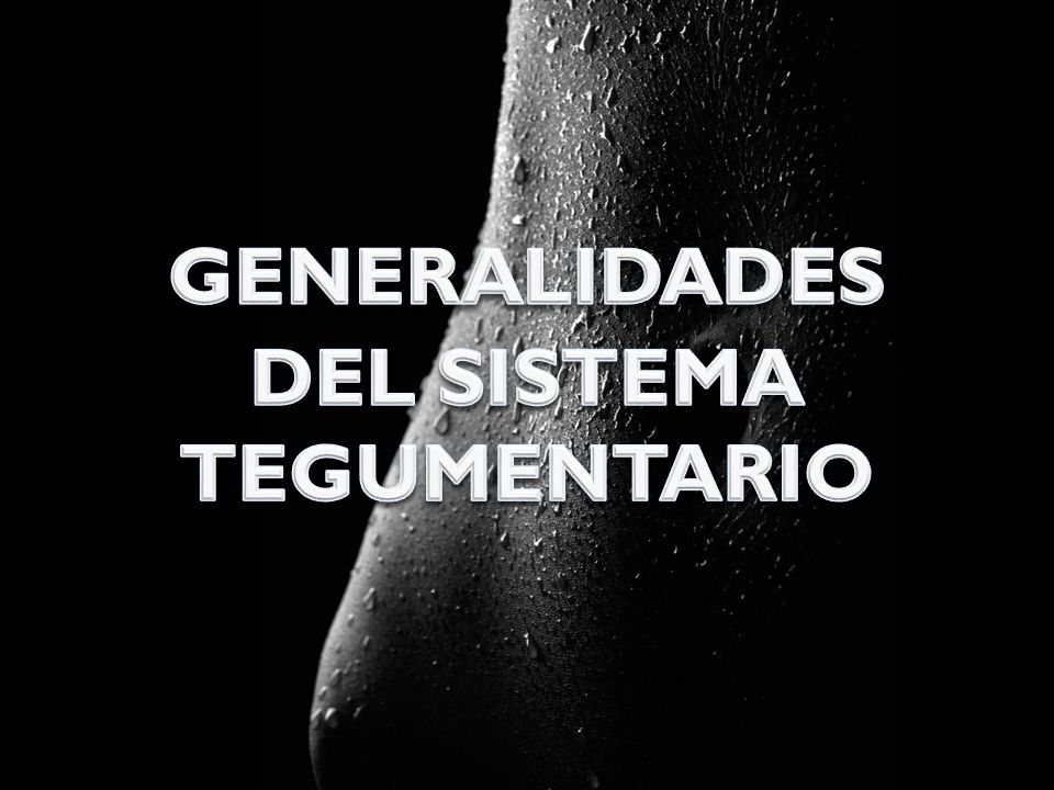GENERALIDADES DEL SISTEMA TEGUMENTARIO