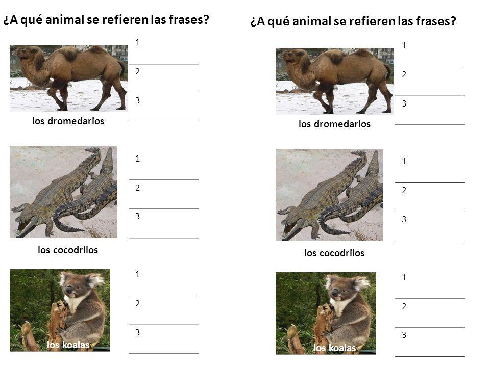 ¿A qué animal se refieren las frases