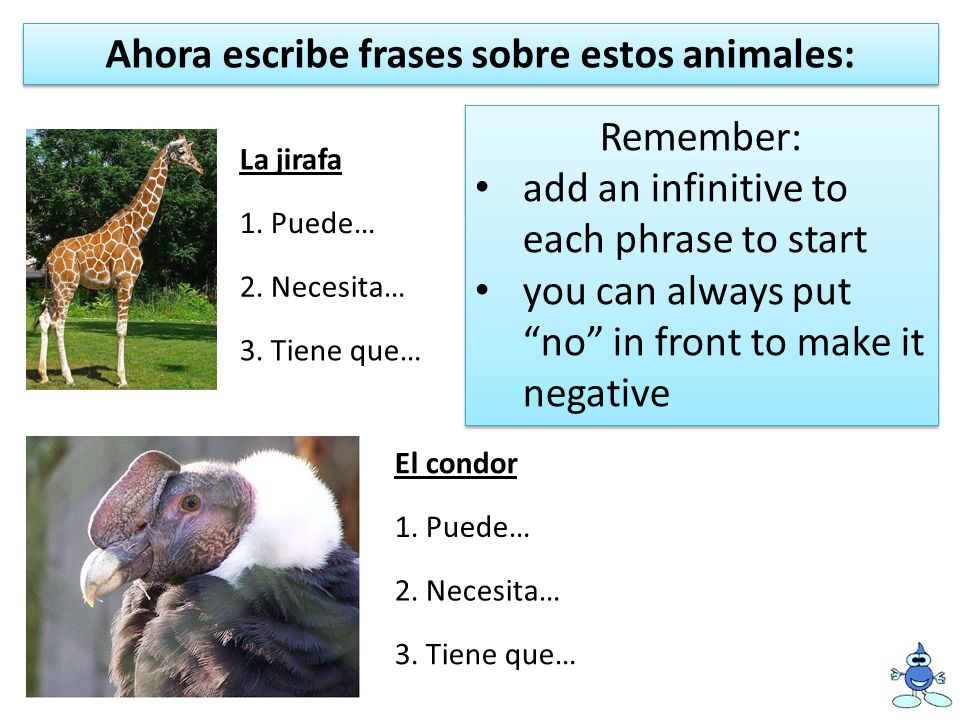 Ahora escribe frases sobre estos animales:
