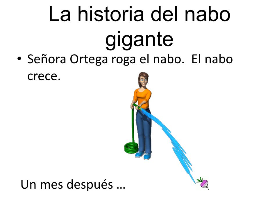 La historia del nabo gigante